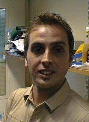 Dr Toni Borysik